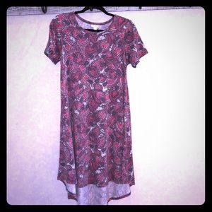 💕💕 LuLaRoe Paisley Carly Dress